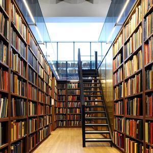 Библиотеки Оленегорска