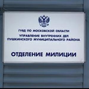 Отделения полиции Оленегорска
